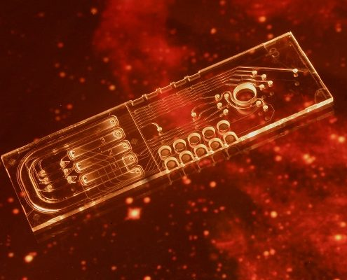 Microfluidics example Life Marker Chip