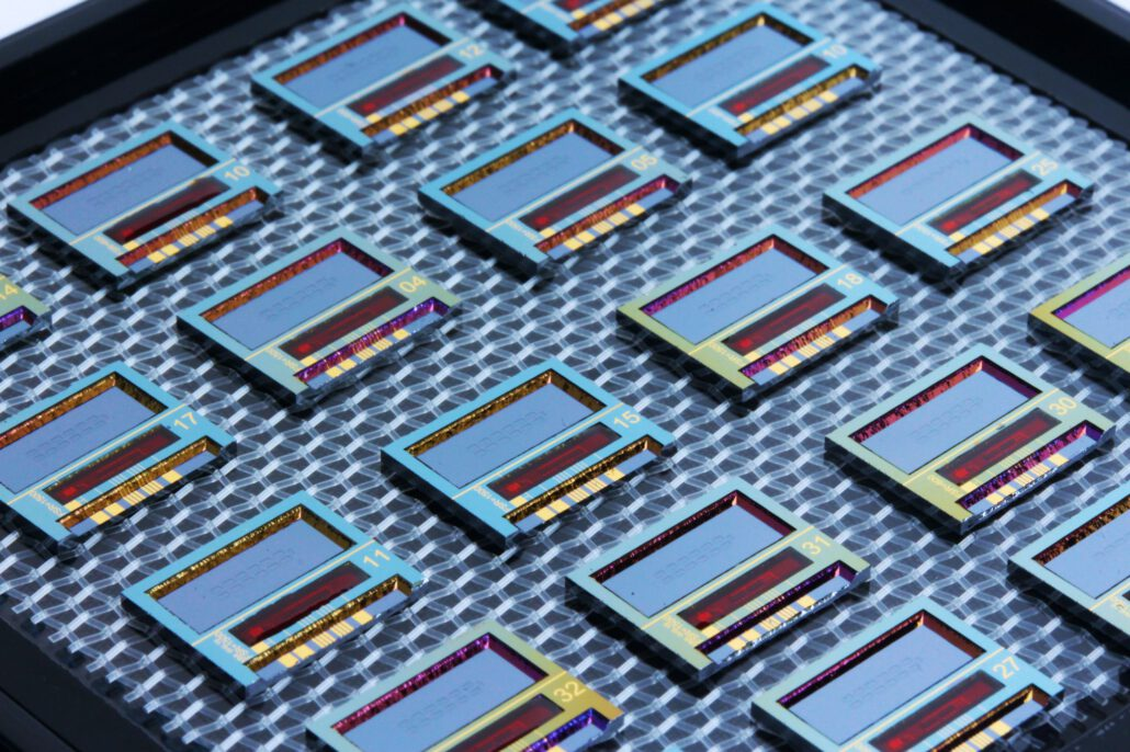 individual photonic integrated biosensor chips